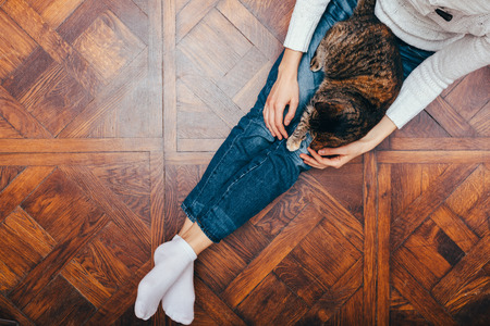 View from above young woman relaxing sitting on wooden floor at home and pet her tabby cat.