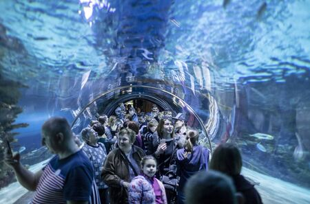 BUDAPEST, HUNGARY - 24 August, 2018: A lot of people and giant whale shark of fantasy underwater with dramatic light ray in Oceanarium Archivio Fotografico - 137706399