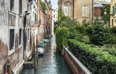 Historic part of Venice with a canal and green garden with ivy near the bricked houses