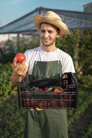 Jeune beau fermier barbu estimant sa première récolte de légumes de la saison