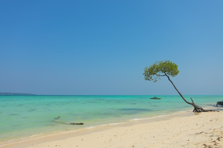 a beach on the east side of Havelock island in Andaman, India