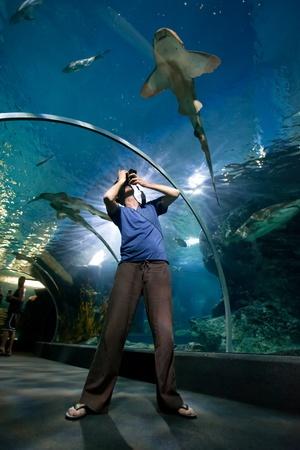 man taking photo of shark in aquarium