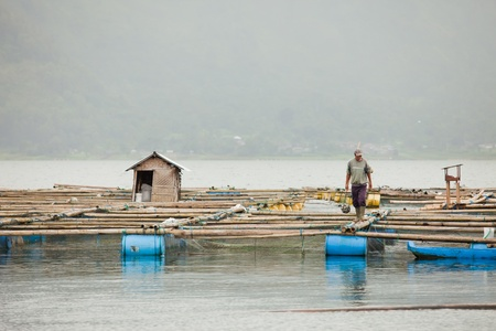 LAKE BATUR, BALI - JANUARY 21. Man taking care of his fish farm on Lake Batur on January 21, 2012 in Bali, Indonesia. Fish farming is their main source of subsistence on the lake.