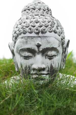 Stone Buddha decoration bust in garden grass photo