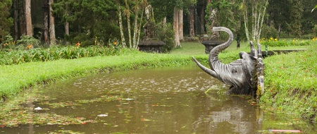 Elephant head on water banks in the botanical gardens in Bali, Indonesia photo