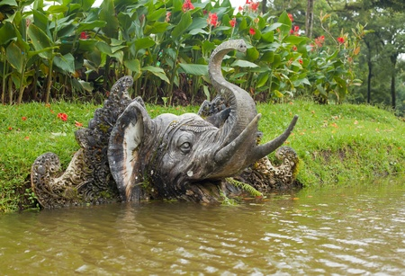 Elephant head on water banks in the botanical gardens in Bali, Indonesia Stock Photo - 12772565