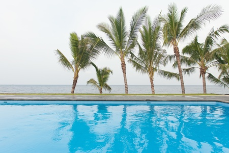 Beautiful pool with palm trees and sea in background in Bali, Indonesia Stock Photo