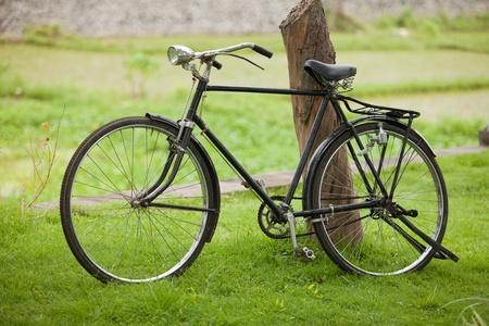 Old vintage steel bicycle in green park. photo