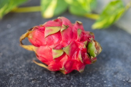 Close up of dragon fruit on black volcanic rock and green leaves in backgroud photo