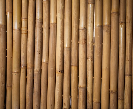 Bamboo sticks serving as background Stock Photo - 13677977