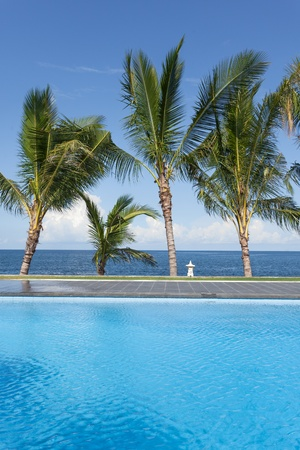 swimming pool and palm trees on seaside in Bali, Indonesia photo