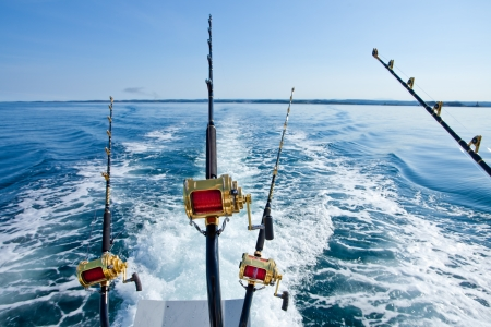 marlin: big game fishing reel in natural setting Stock Photo