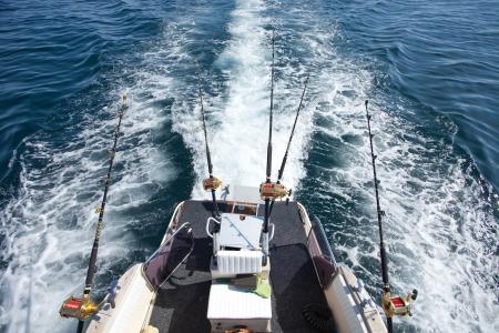 big game fishing reel in natural setting Standard-Bild