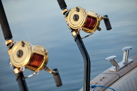 big game fishing reel in natural setting photo