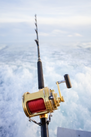 blue marlin: big game fishing reel in natural setting Stock Photo