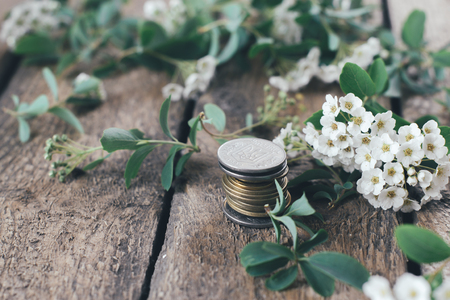 branches on a wooden background with coins