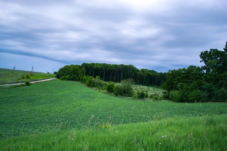 Summer evening landscape in the countryside outside the city