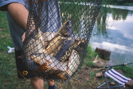 Fishermans catch fish in nets on the pond