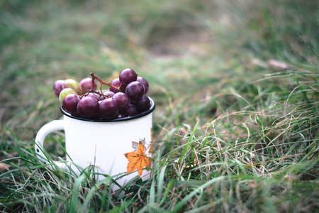 A bunch of grapes in a white mug on the grass