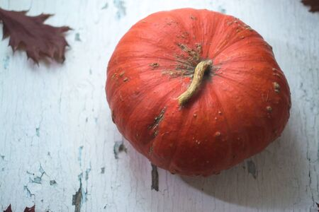 Halloween pumpkin on white natural wooden background
