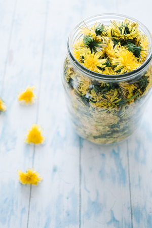 Dandelions blooming in a glass jar on a blue wooden background.
