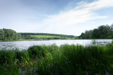 Summer morning landscape on the nature near the river.