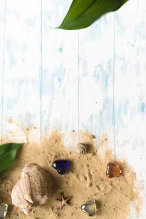 Sea shell on a wooden background with sand. Concept of summer holidays. Stock Photo