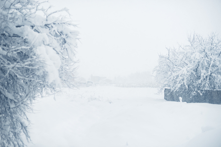 Winter snowfall in the village. Snowy collapse. Stock Photo