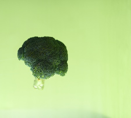 Broccoli in the air on a green background.