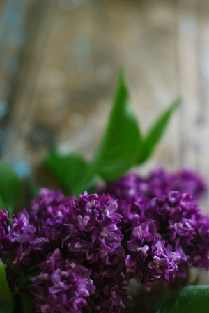 Blooming lilac on an old wooden background.
