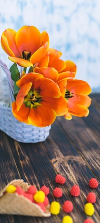 Tulips blooming in a basket on a wooden background. Stock Photo
