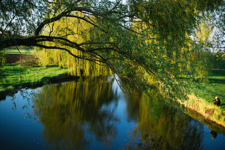 Spring evening sunny landscape near the river. Stock Photo
