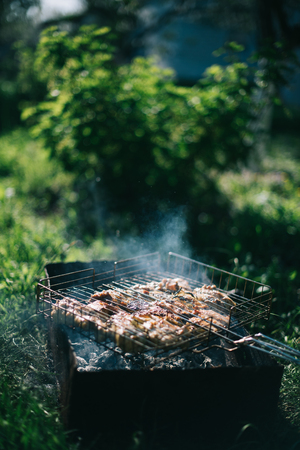 Barbecue on a summer day in the garden. Picnic outdoor recreation concept. Stock Photo