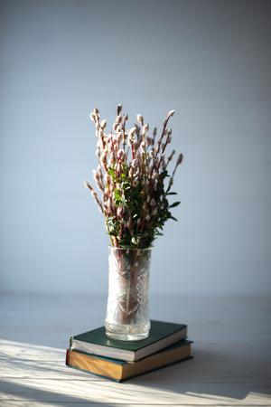 Spruce branches on the books in a glass vase on a white wooden background.
