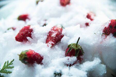 Frozen strawberries in the snow and ice.