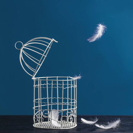 Minimalistic still life of a birdcage on a table and scattered feathers. The concept of freedom, break free, fly away from prison and other associations. Stock Photo