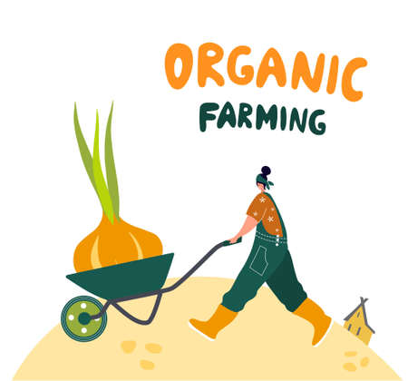 Organic farming. Agricultural workers planting and gathering crops, working on tractor, farmer, farmhouse. Flat cartoon vector illustration. Local grown.