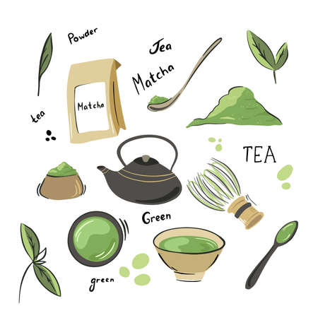 Collection of matcha tea products. Matcha powder, tea pot, bamboo spoon, tea leaves,. Hand drawn vector set. Colored trendy illustration. Flat design.