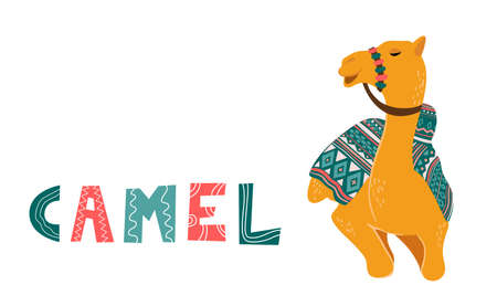 Camel cartoon vector illustration on white. Decorated camel with seat for a ride. Camel traditional colorful decorated