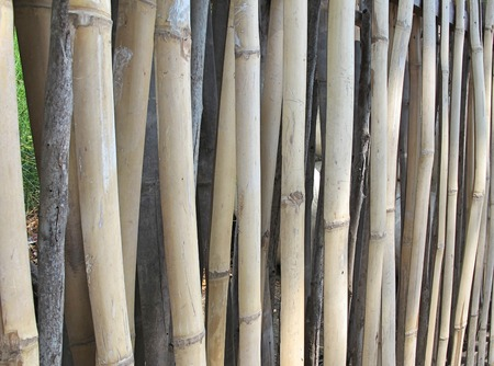 in lined: Bamboo fence lined background. Stock Photo