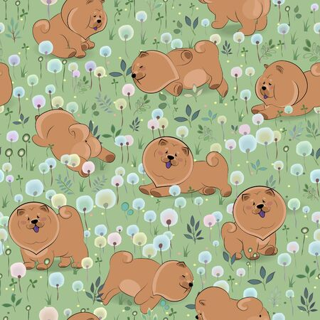 blossoming: Happy dogs chow-chow on the blossoming field. Watercolor flowers and plants.