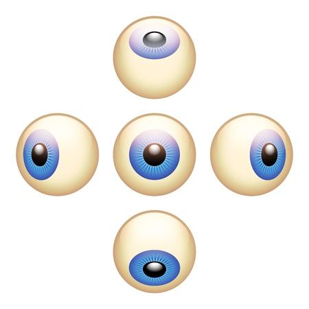 eye ball: 5 direcciones globos oculares