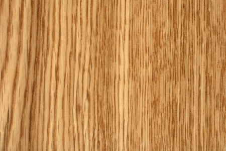lacquered: Lacquered oak, wood texture Stock Photo