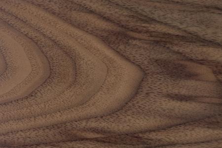 holzvert�felung: Nussbaum Holzstruktur