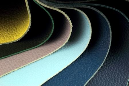 upholsterer: Color palette sample picker of leather material