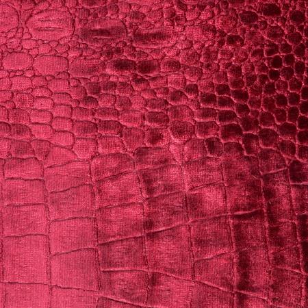 luxury crocodile texture photo