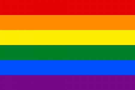 rainbow flag: Rainbow Flag