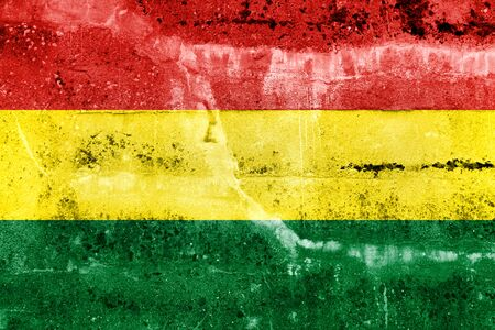 Bolivia Flag painted on grunge wall photo