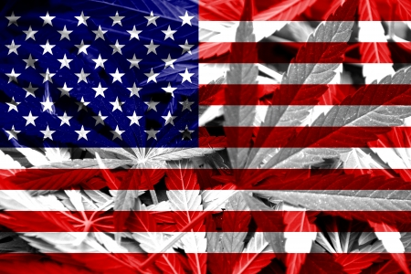 marijuana plant: USA Flag on cannabis background  Drug policy  Legalization of marijuana