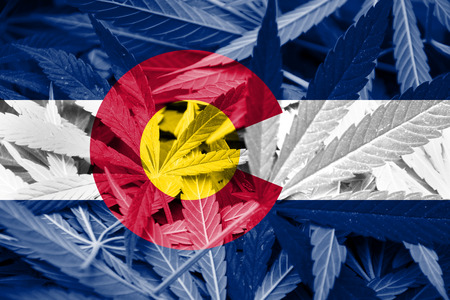colorado: Colorado Flag on Cannabis background